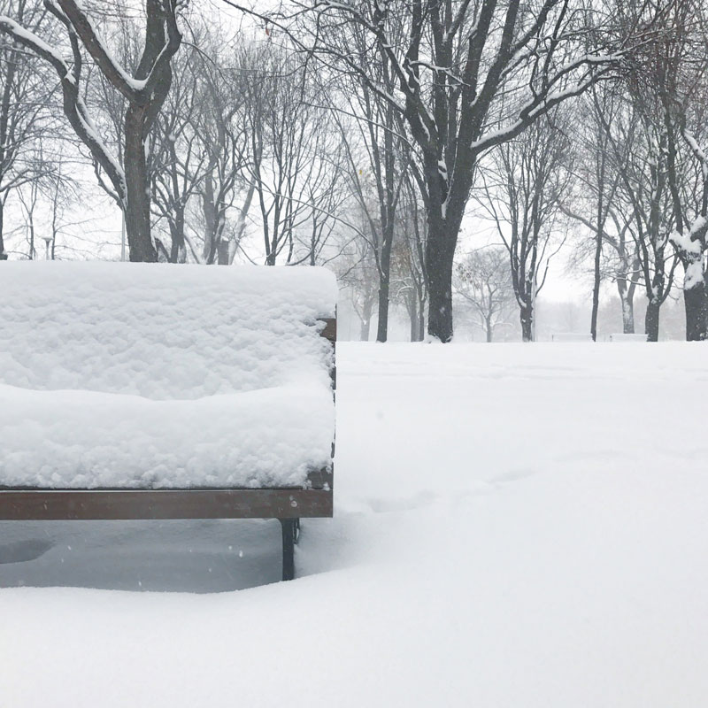Have a seat Mr. Snow